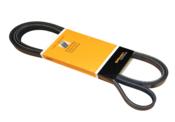 Mercedes Serpentine Drive Belt - Contitech 0039938596